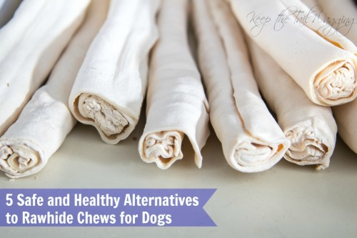 5 Safe and Healthy Alternatives to Rawhide Chews for Dogs