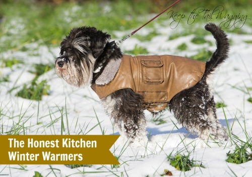 Swapping The Honest Kitchen Winter Warmers with a Friend
