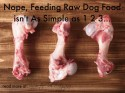 Raw Dog Food Isn't as Simple as 1 2 3