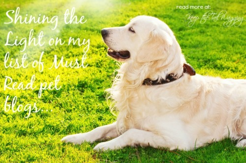Shining the Light on my list of Must Read pet blogs