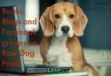 Books and Blogs on Raw Dog Food