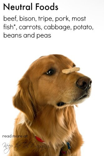 Chinese Medicine, Neutral Foods, Raw Dog Food