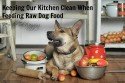Keeping Our Kitchen Clean When Feeding Raw