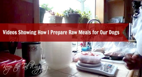 Preparing Raw Meals with @TheHonestKitchen